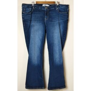 Torrid Bootcut Denim w Strech Medium Wash
